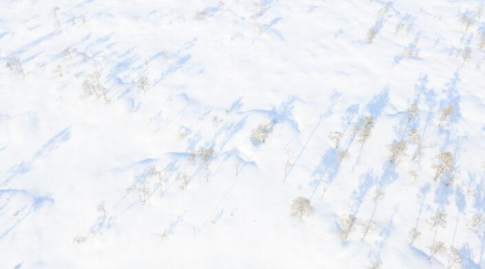 Droonifoto lumisest rabast Drone photography snowy landscapes in Estonia